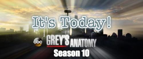 Seriale - Grey's Anatomy - Pagina 16 Tumblr_mtp3b4cjuD1r4d9qjo2_500