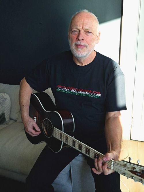 Happy Birthday Sir Gilmour! Tumblr_n1iiw616ql1st2b64o1_500