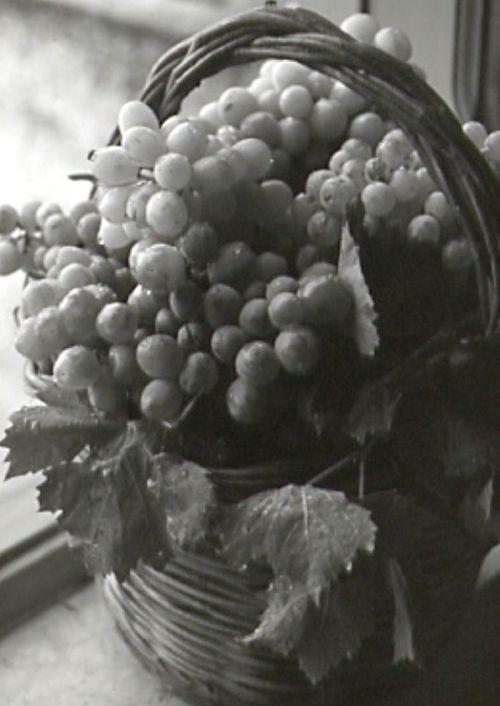 Volim voće - Page 14 Tumblr_mqvtc2tYSt1qg205no1_500