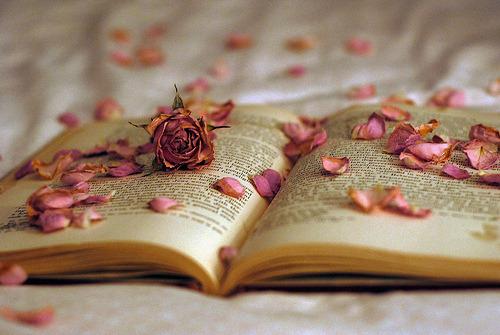 LIBROS = A SABIDURIA , CONOCIMIENTOS ..... - Página 2 Tumblr_mjymdu8R9L1ra46sfo1_500