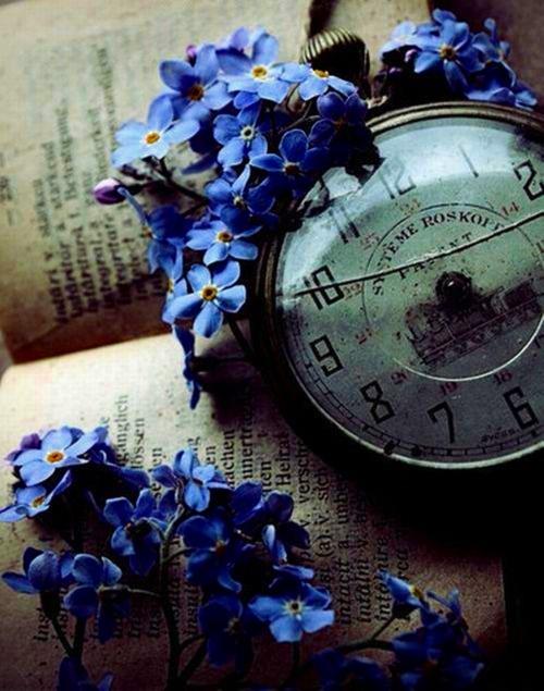 """""""""""""""... En azul..."""""""""""" - Página 2 Tumblr_mnm1acfBiM1s6rlt8o1_500"""