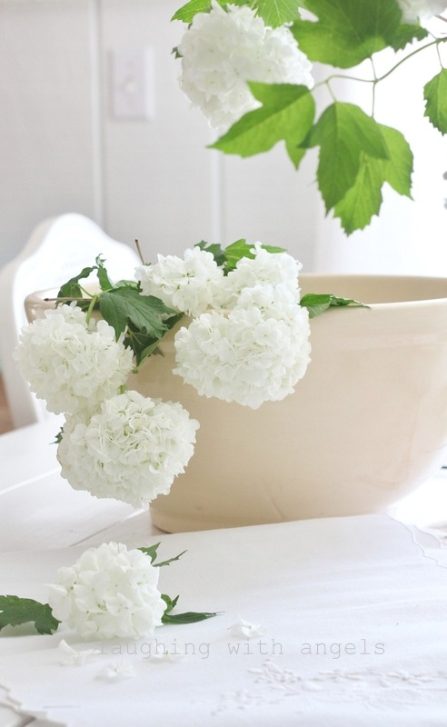 Volim bijelo - Page 18 Tumblr_n7dbk16BTP1s4e9y0o1_1280