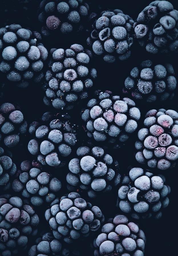 Volim voće - Page 13 Tumblr_n63ynyAXPf1qa4bkpo1_1280