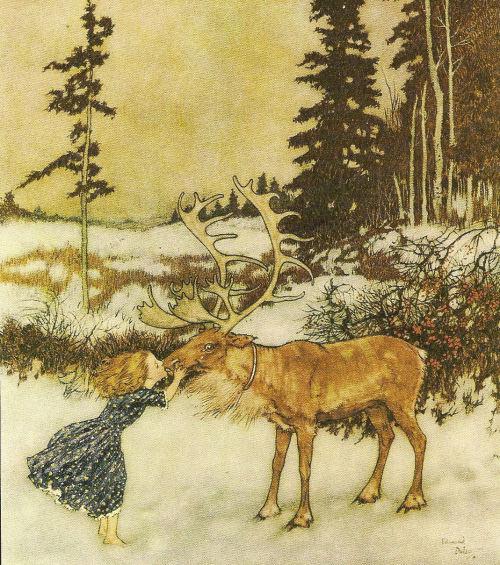 The reindeer  Tumblr_ldqn5kspf61qaseffo1_500