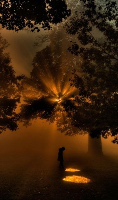 Noćne fotografije... - Page 4 Tumblr_n411c8D5eu1sg22dvo1_500