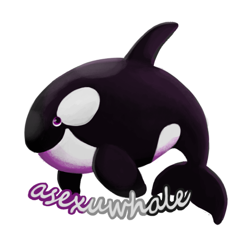 Asexuwhale the Wailord Tumblr_nh3sbnmOzb1tpv48uo2_500