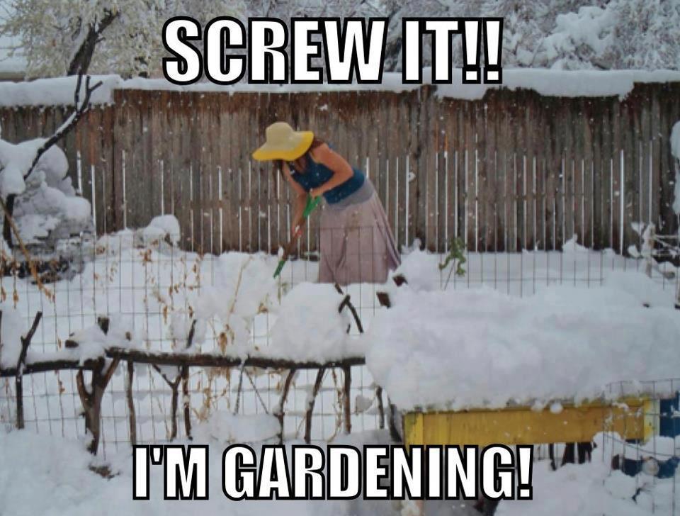 New England ~ February 2014 Gardening