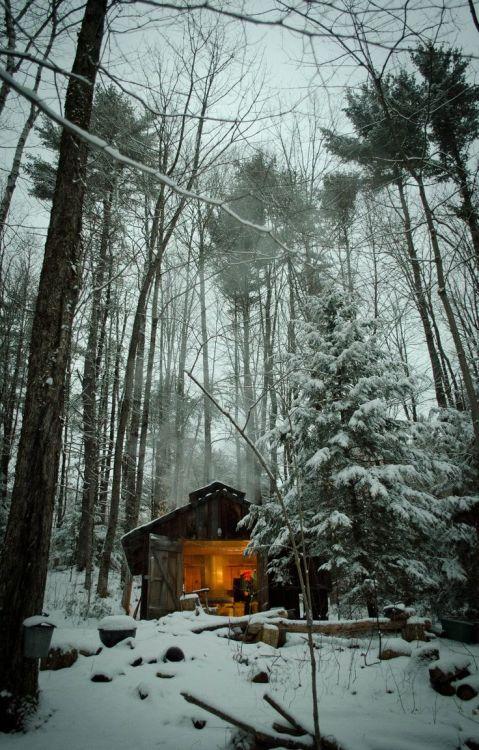 Sve što vas asocira na zimu u fotografiji - Page 2 Tumblr_mvgbevtxgb1qb30dwo1_500