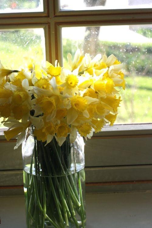 Volim žuto - Page 10 Tumblr_n3i8nfc1vj1sg22dvo1_500