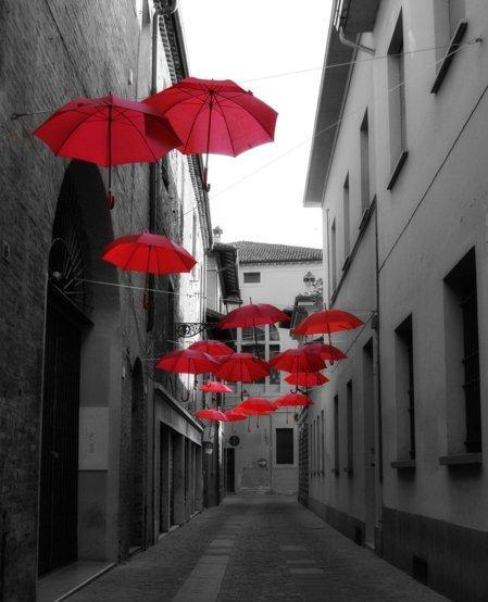 Red & black pictures - Page 5 Tumblr_ltmelj6xHq1r3uzmno1_500