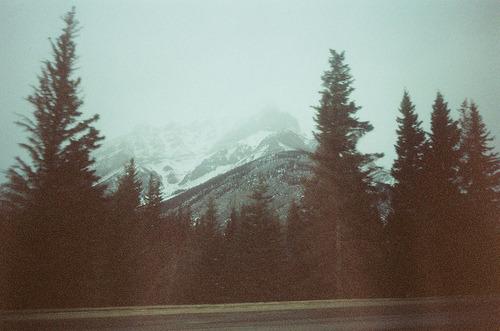 Peisaje... - Page 8 Tumblr_m755ecviQQ1rav008o1_500