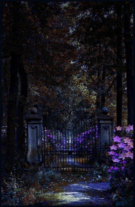 Noćne fotografije... - Page 4 Tumblr_n411h63ysC1sg22dvo1_500