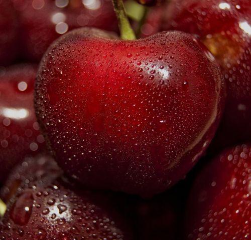 Volim voće - Page 13 Tumblr_n81tc8t55L1qg205no1_500