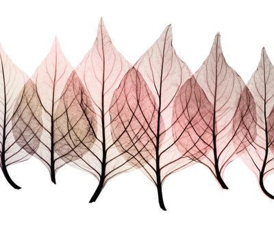 Empieza el otoño. - Página 2 Tumblr_mrk86tblco1s9tkqjo1_400