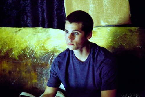 Dylan O'Brien - Page 3 Tumblr_lqned0hhVX1r1hmuoo1_500