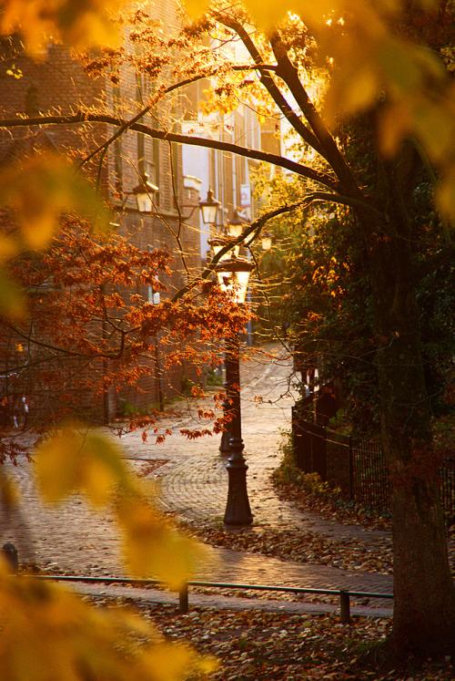 Empieza el otoño. - Página 2 Tumblr_madiq6z9Wm1retp6xo1_500