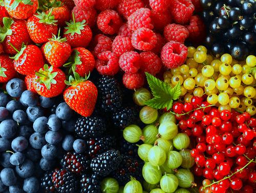 Volim voće - Page 13 Tumblr_mbx1cwHyrB1qzbf0co1_500