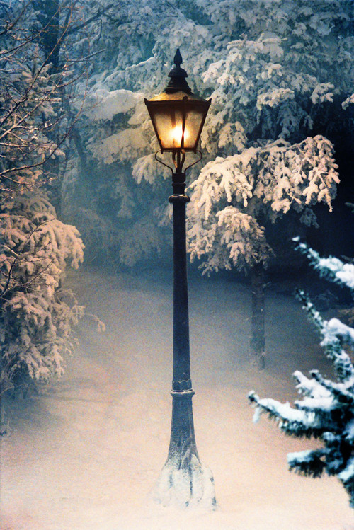 Sve što vas asocira na zimu u fotografiji Tumblr_mdydrgoPMY1qb30dwo1_500