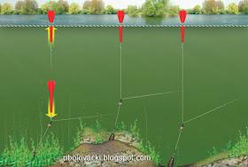 Sportski Ribolov - Page 4 Kretanje-markera-markiranje-saranski-ribolov-mjerenje-dubine