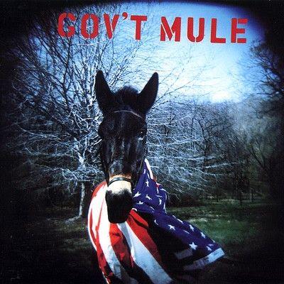 A rodar XI                          - Página 19 Govt-mule-govt-mule-