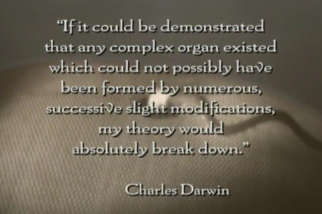 Вопросы христиан для эволюционистов. - Страница 11 %D0%91%D0%B5%D0%B7%D1%8B%D0%BC%D1%8F%D0%BD%D0%BD%D1%8B%D0%B9