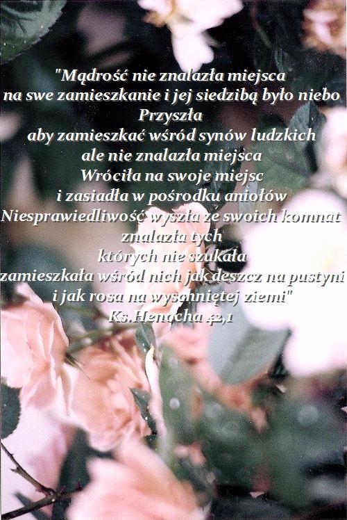 Najciekawsze wersety biblijne... Stylowi_pl_fotografia_4686574_Fotor