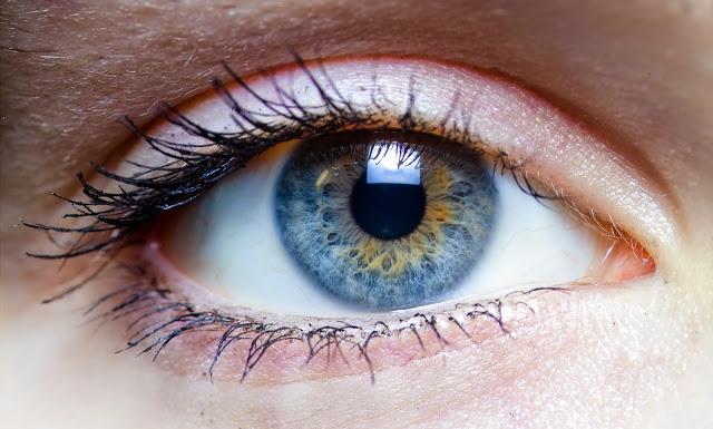 The Secrets of Mind(fulness) The Awakening of the Thinking Machine  Eye