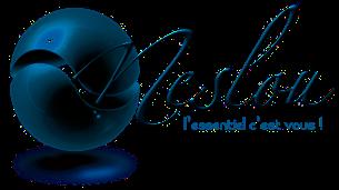 Neslou.fr : site d'annonces et d'enchères retro !  Logo-Neslou
