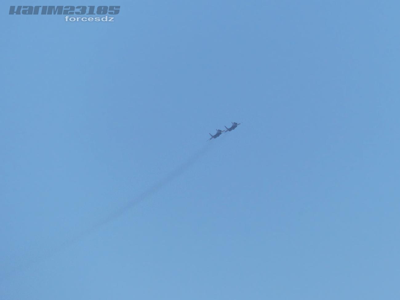 صور طائرات القوات الجوية الجزائرية  [ MIG-29S/UB / Fulcrum ] 1