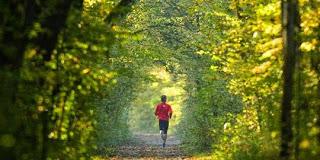 Marathon girl  - Christophe André Courrir%2Ben%2Bfore%CC%82t