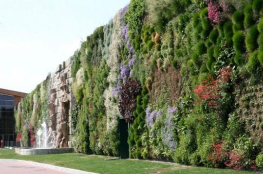 உலக சாதனை படைத்த வினோதமான பூந்தோட்டம்.! (படங்கள்) Beautiful_garden_005.w540
