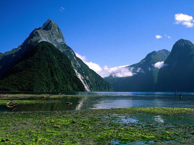 FOTOS MARAVILLOSAS - Página 5 Nueva-Zelanda-Naturaleza-Paisajes
