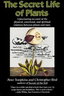 Spiritual Science Secret-life-of-plants1