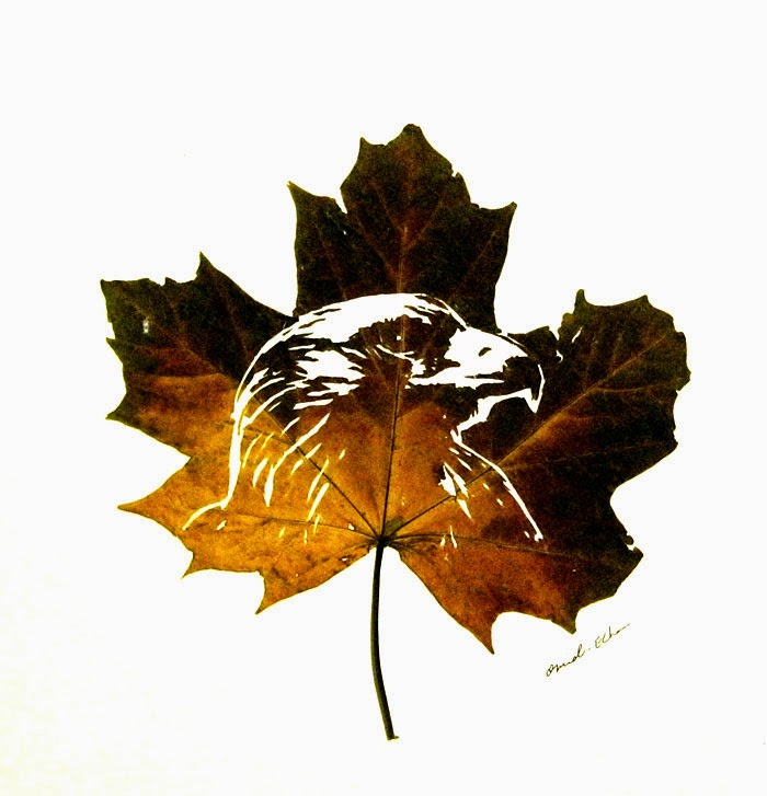 Культура и Искусство Leaf-cutting-omid-asadi-6