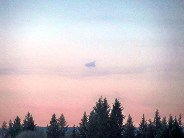 Manta ray-shaped UFOs photographed over Hondo TX and Kansas City, MO Manta%2Bray-shaped%2Bufo%2Bt3-rb%2B%25281%2529