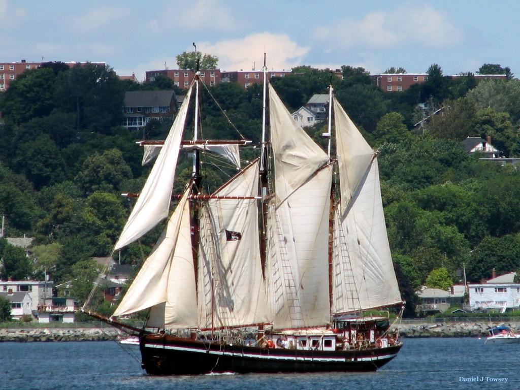 le bateau de Martin du 22 juillet trouvé par Martine Bel_Espoir_II_Wallpaper_5u07t