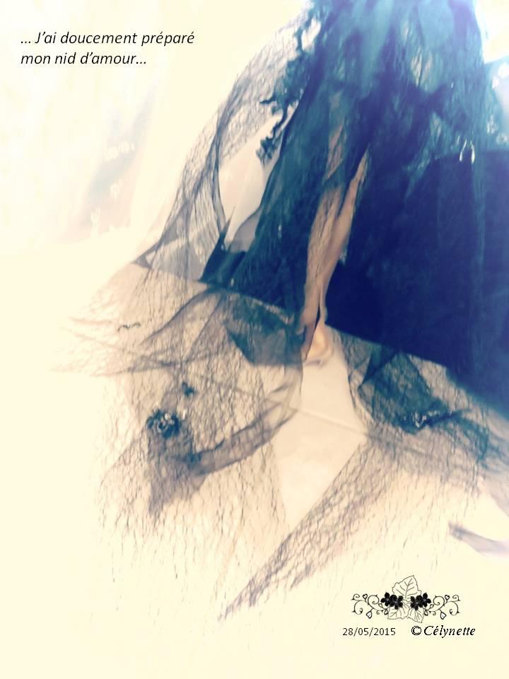 Mythologie : la scarlett à Cabourg face à la mer Diapositive1