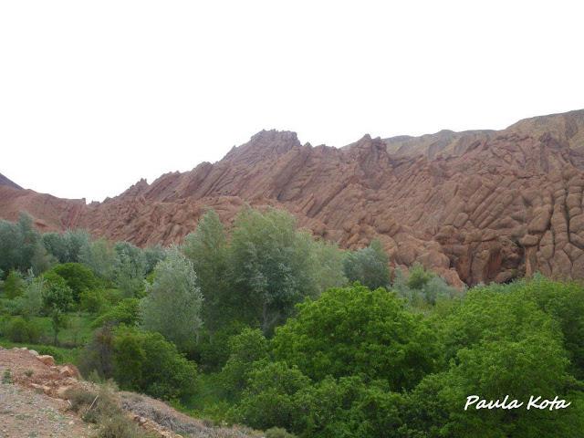 marrocos - Na Terra do Sol Poente - Viagem a solo por Marrocos - Página 2 IMGP0365