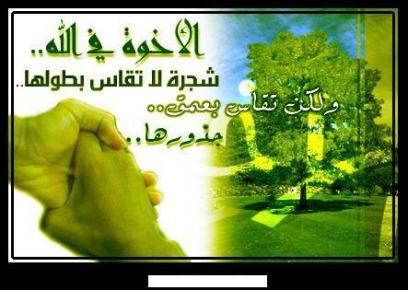 مواضيع مقترحة للبكالوريا في مادة اللغة العربية جميع الشعب 434013810