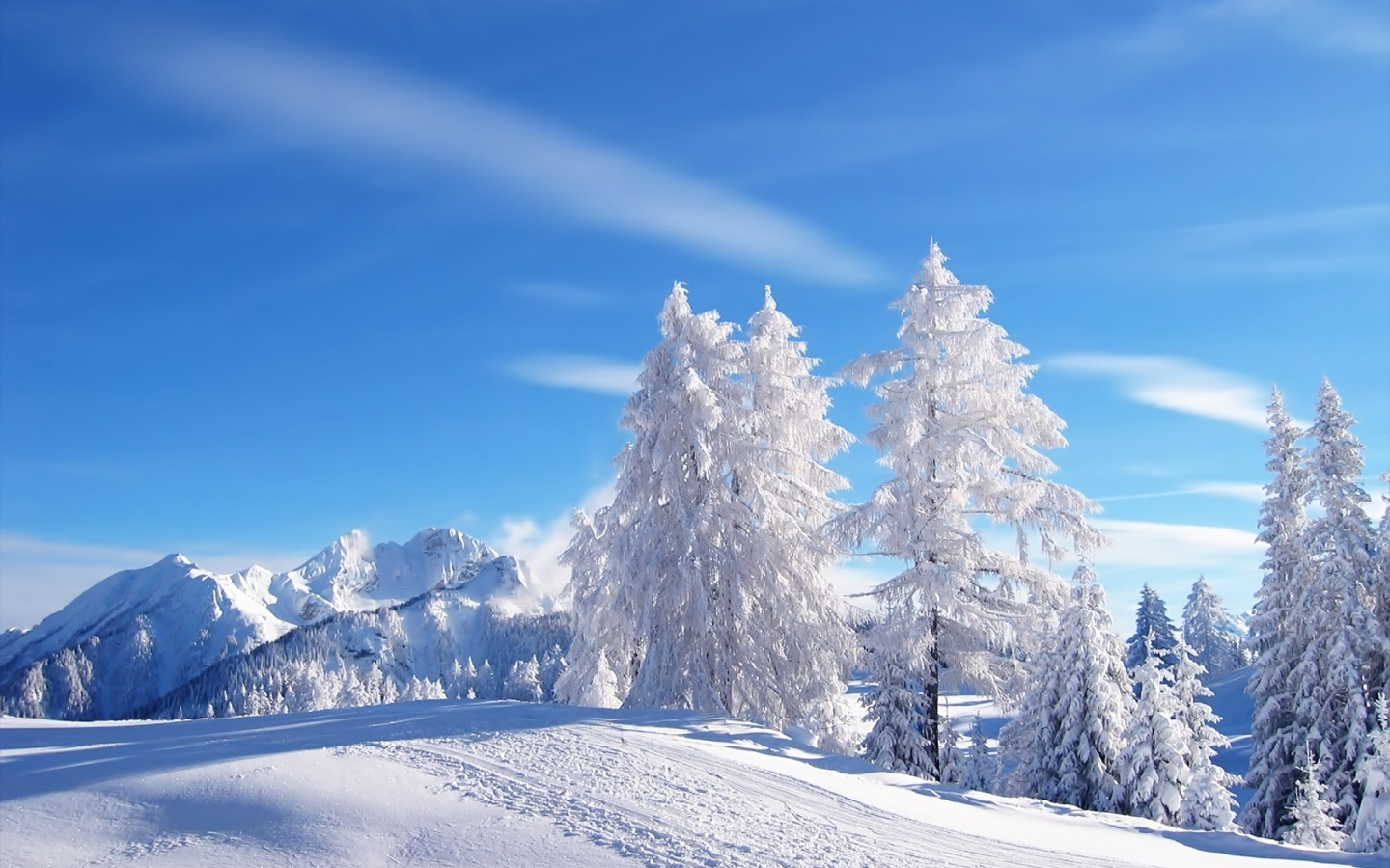 """ทุ่งหิมะล่ะ"" Snow-wallpaper-winter-nature-wallpaper-widescreen"