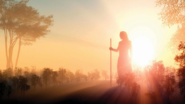 Discovering the Purpose of Your Incarnation Incarnation