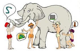 Reincorporación al foro Elefante
