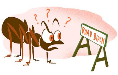 واحه ابوعمار - البوابة Ants-bug-science-lg