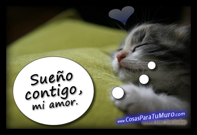 2º Amante Eterno - J R Ward - Página 19 Sueno_contigo_mi_amor-other