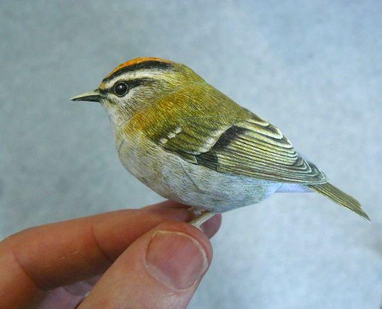 فنان يصنع طيور من الورق واقعية بشكل لا يصدق  Papercraft-birds2%5B1%5D