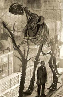 Dinosaur Hoax - Dinosaurs Never Existed! Hadrosaurus