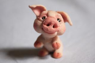 Piggy in love IMG_1369