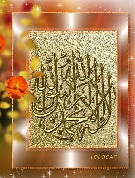 تصاميم اسلامية جديدة من تصميمى  1NCif-156-1