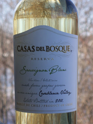 [Chili] - le vignoble chilien  GEDC0706