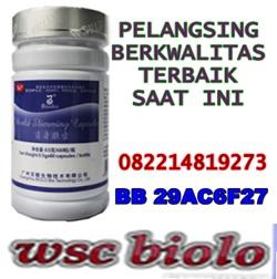 obat pelangsing paling ampuh di indonesia Pelangsing%2Bberkwalitas%2Bterbaik